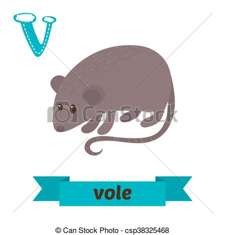 Vole clipart #9, Download drawings