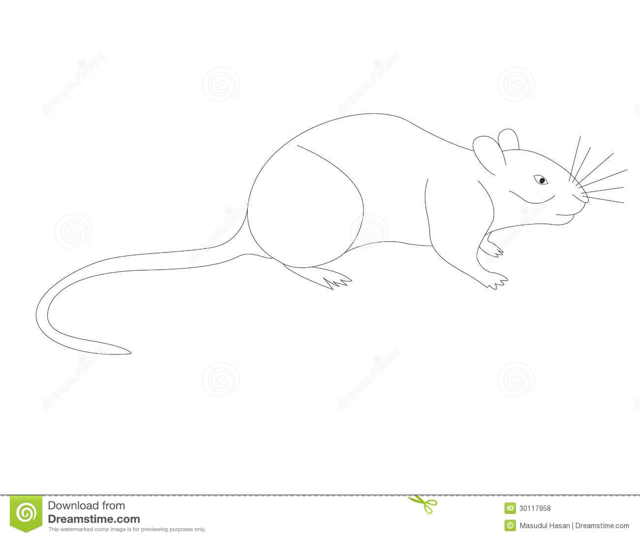 Vole coloring, Download Vole coloring