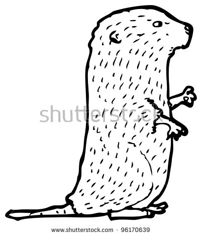 Vole coloring #9, Download drawings