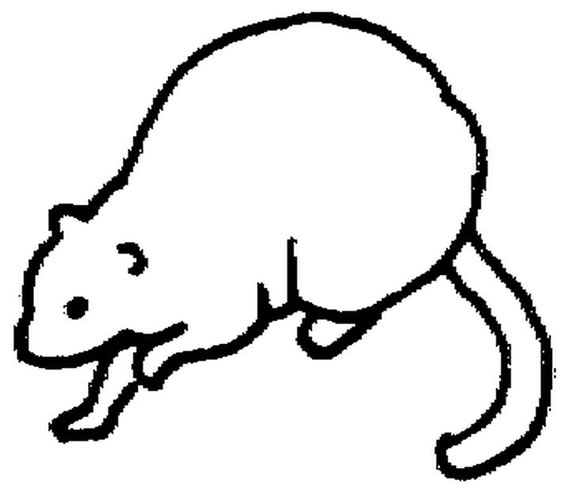 Vole coloring #10, Download drawings