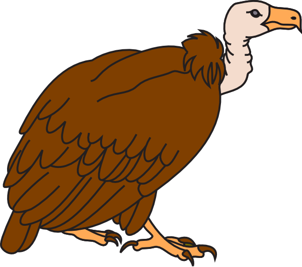 Vulture clipart #17, Download drawings