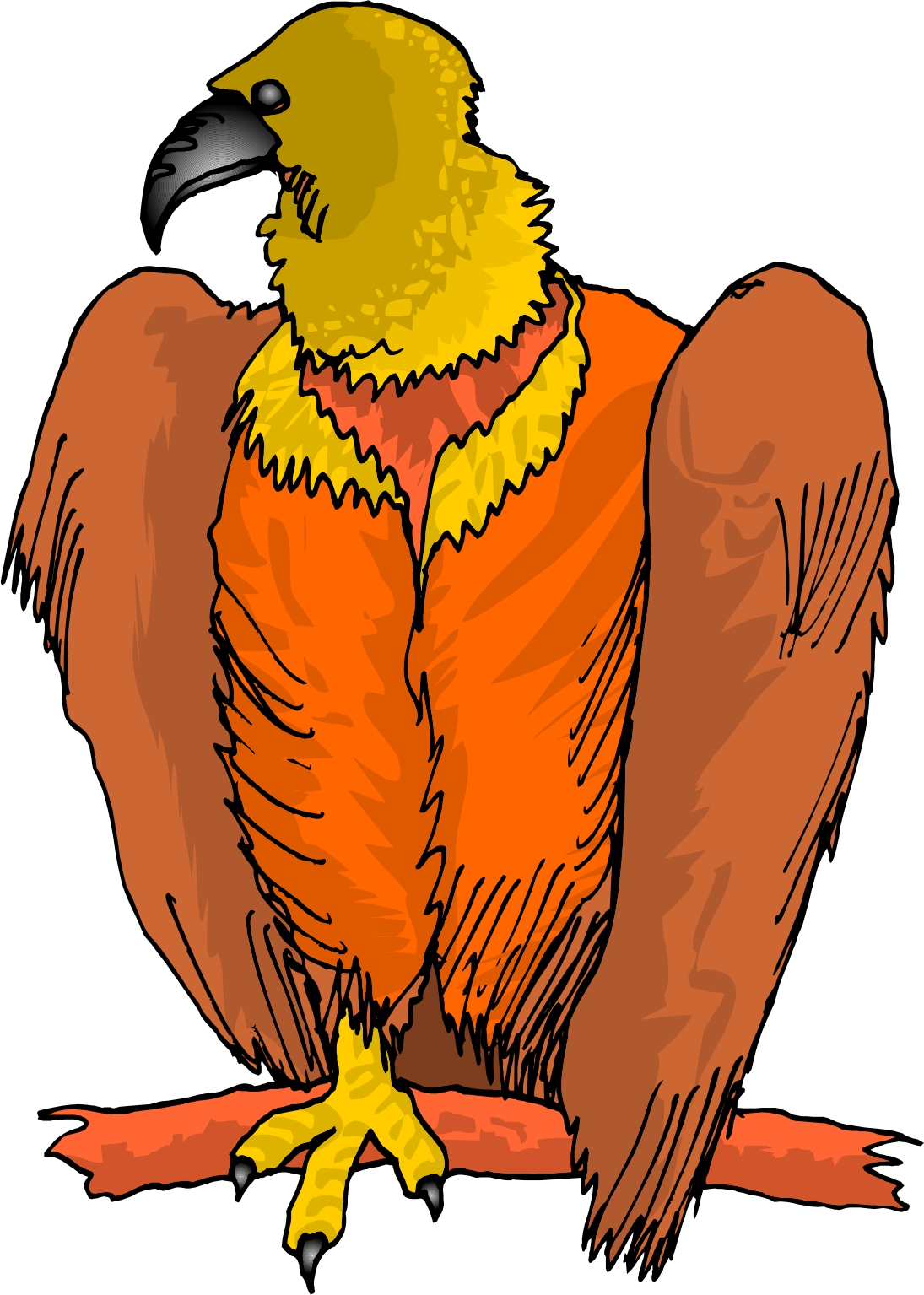 Vulture clipart #11, Download drawings