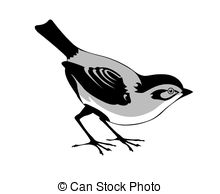 Wagtail clipart #11, Download drawings