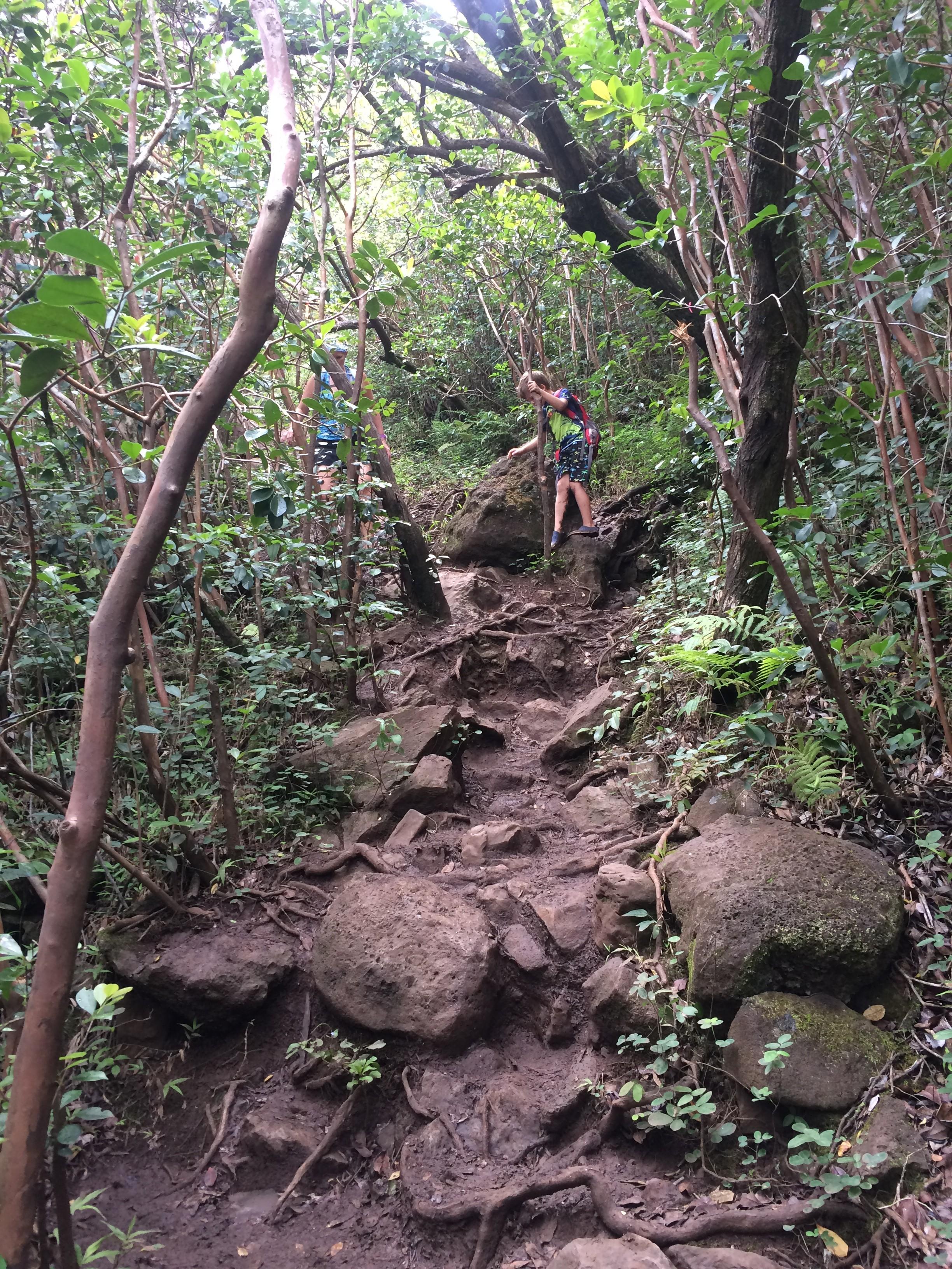 Waimano Falls clipart #20, Download drawings