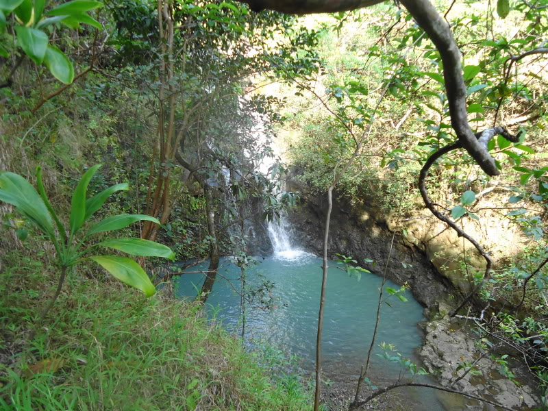 Waimano Falls clipart #19, Download drawings