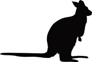 Wallaby clipart #8, Download drawings