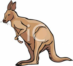 Wallaby clipart #19, Download drawings