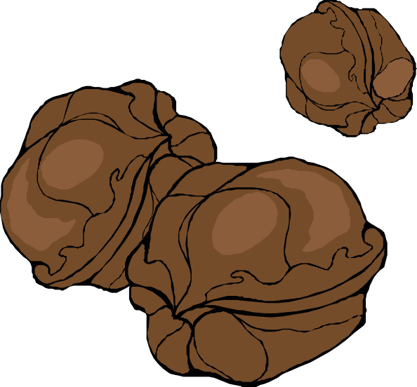 Walnut svg #20, Download drawings