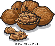Walnut clipart #1, Download drawings
