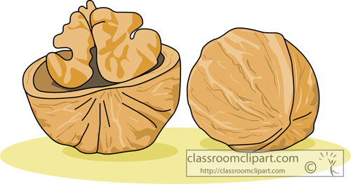 Walnut clipart #19, Download drawings
