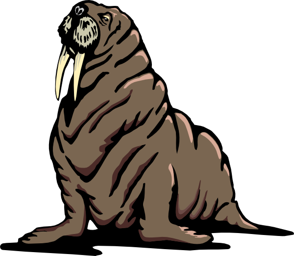 Walrus svg #19, Download drawings