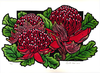 Waratah clipart #20, Download drawings
