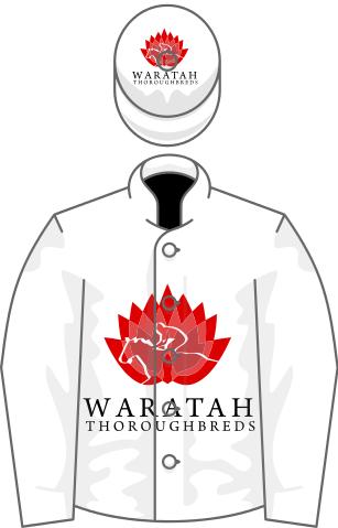 Waratah svg #16, Download drawings