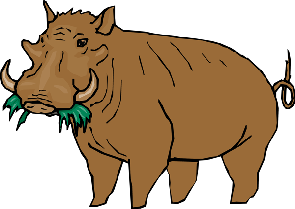 Warthog clipart #17, Download drawings