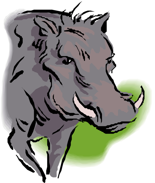 Warthog clipart #1, Download drawings