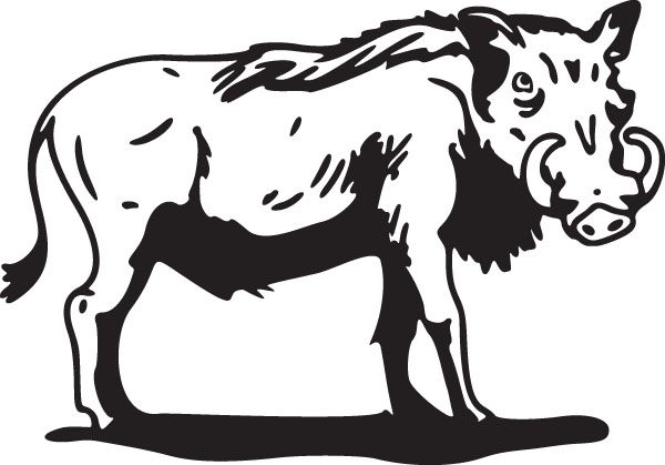 Warthog clipart #15, Download drawings