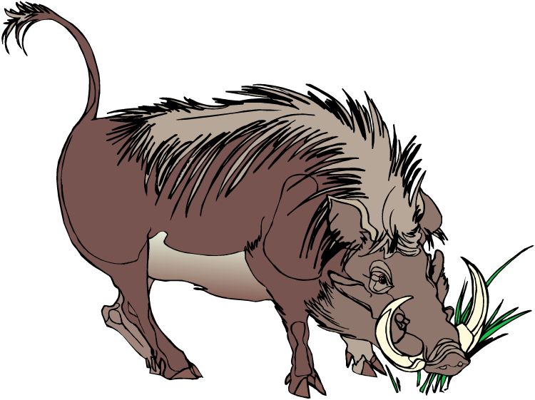 Warthog clipart #4, Download drawings