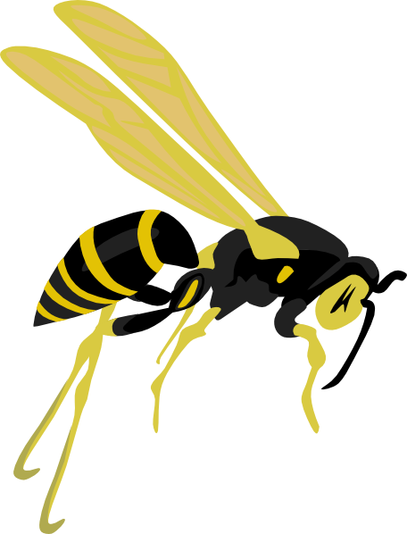 Wasp clipart #18, Download drawings