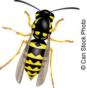 Wasp clipart #4, Download drawings