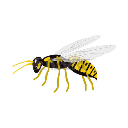 Wasp clipart #12, Download drawings