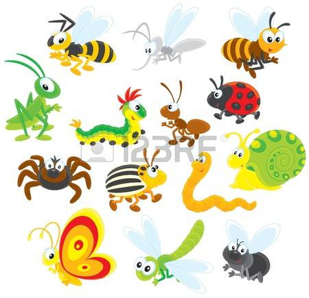 Wasp Spider clipart #5, Download drawings