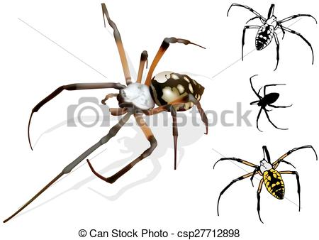 Wasp Spider clipart #11, Download drawings