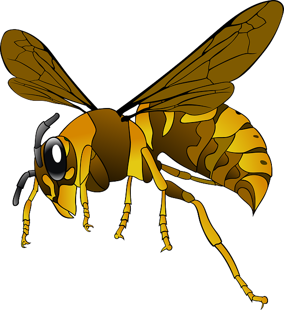 Wasp svg #11, Download drawings