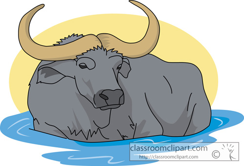 Water Buffalo clipart #1, Download drawings