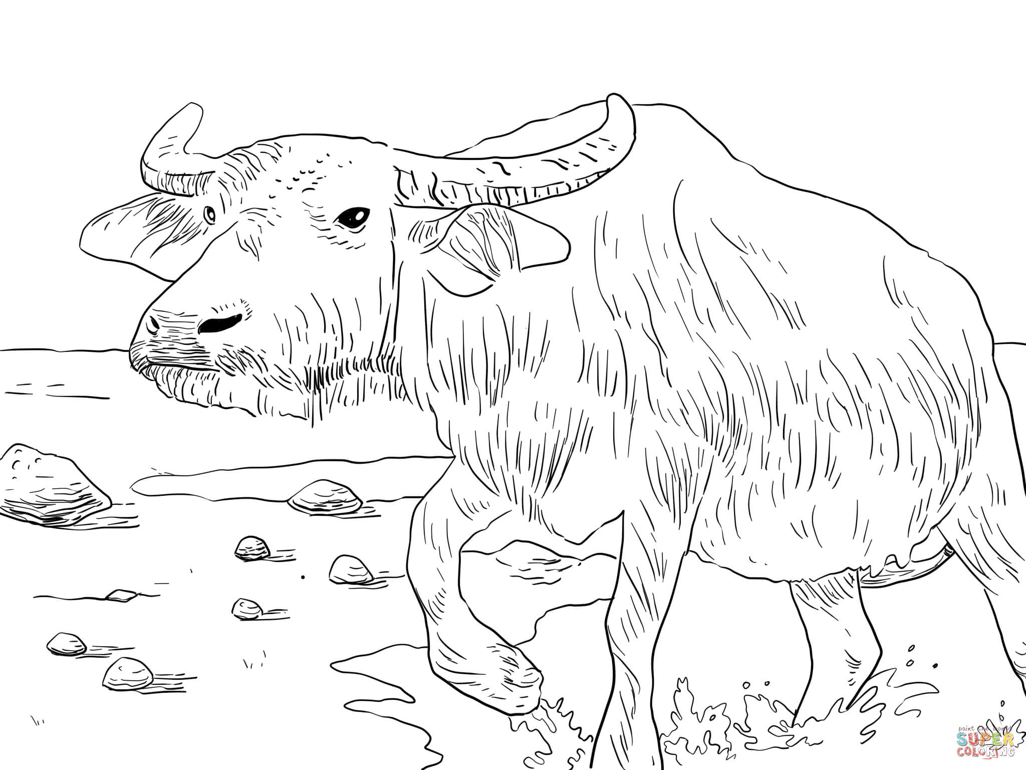 coloring pages of buffalop - photo#40