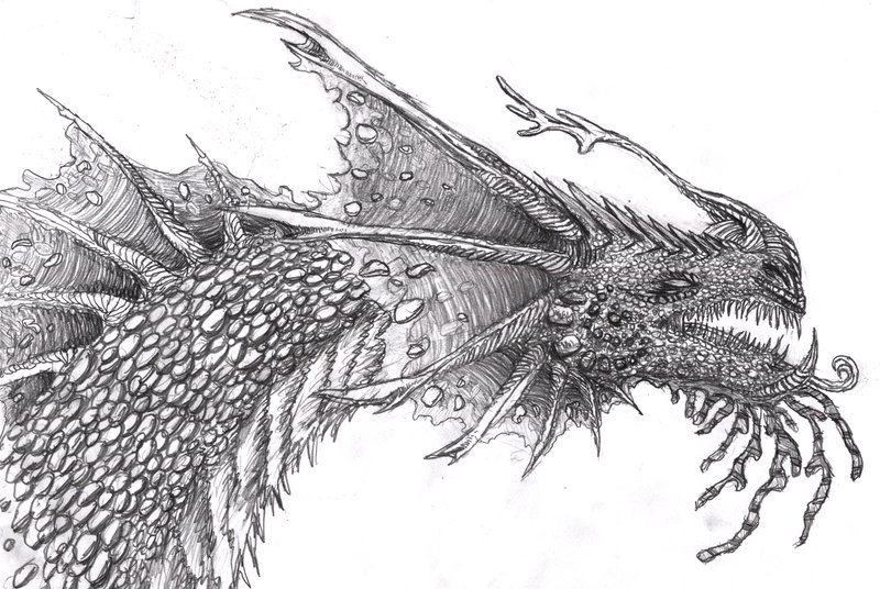 Water dragon coloring download water dragon coloring for Hard coloring pages of dragons