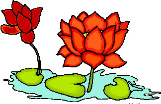 Water Lily clipart #5, Download drawings