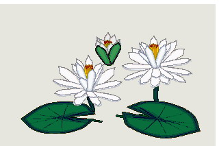 Water Lily clipart #12, Download drawings