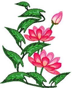 Water Lily clipart #9, Download drawings