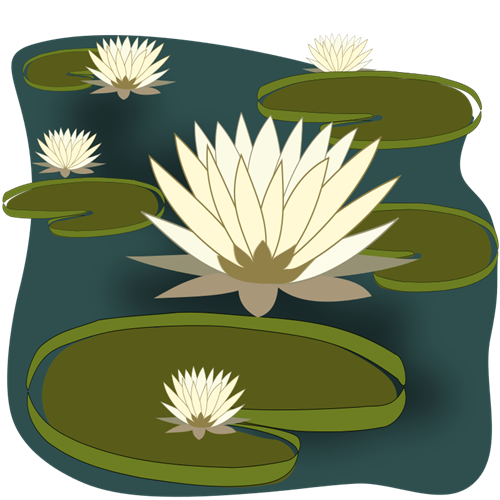 Water Lily clipart #20, Download drawings