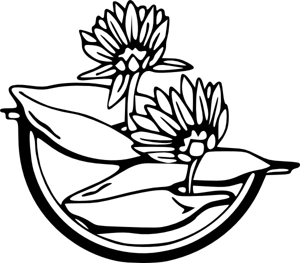 Water Lily clipart #14, Download drawings