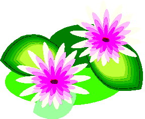Water Lily clipart #11, Download drawings