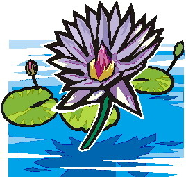 Water Lily clipart #6, Download drawings
