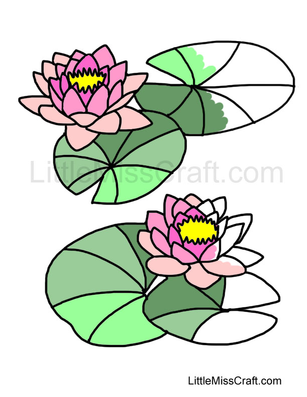 Water Lily coloring #6, Download drawings