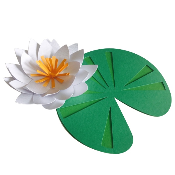 Water Lily svg #19, Download drawings