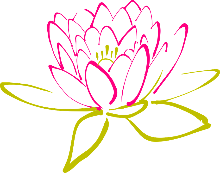 Water Lily svg #8, Download drawings