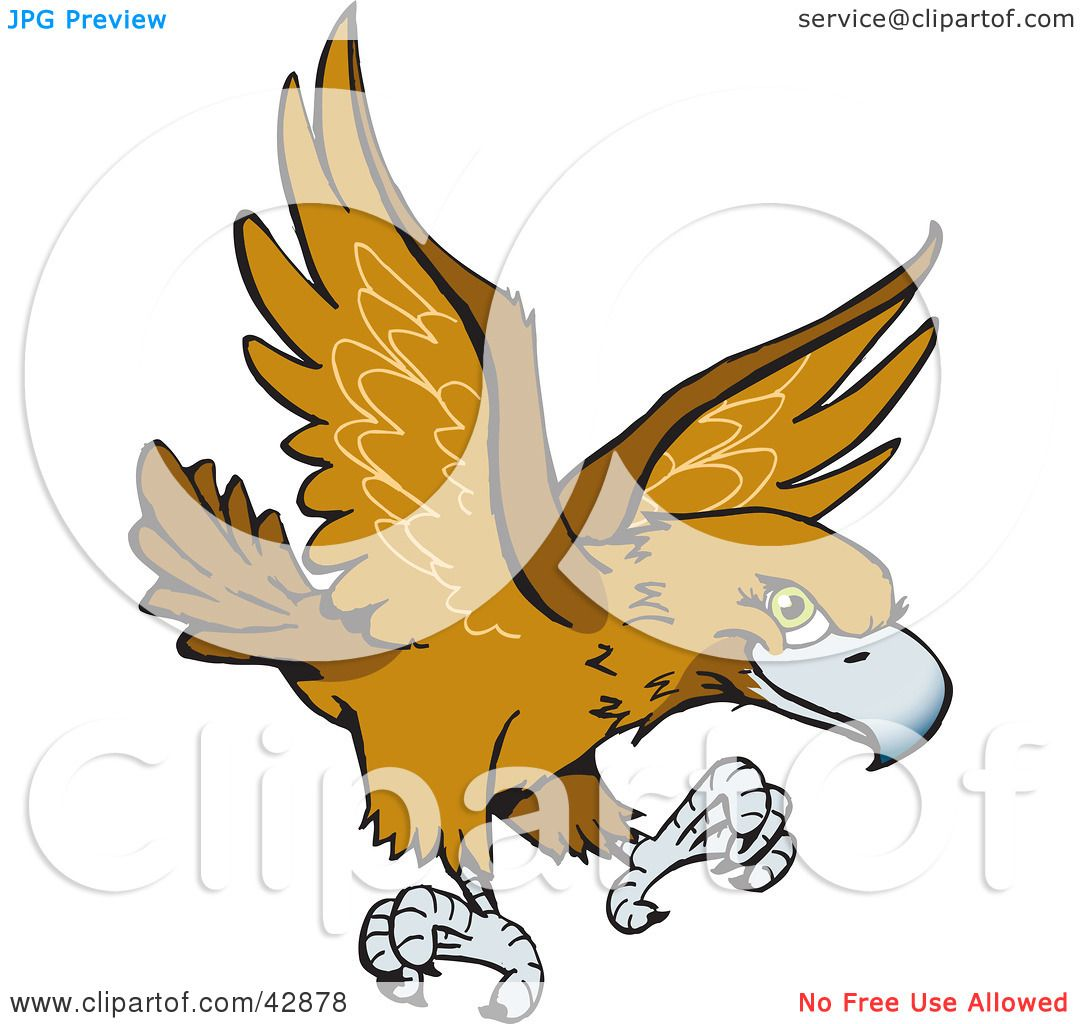 Wedge Tailed Eagle clipart #18, Download drawings