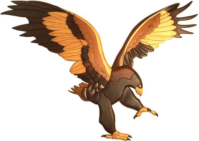 Wedge Tailed Eagle clipart #3, Download drawings