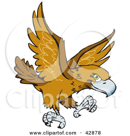 Wedge Tailed Eagle clipart #19, Download drawings