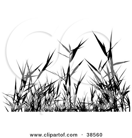Weeds clipart #8, Download drawings
