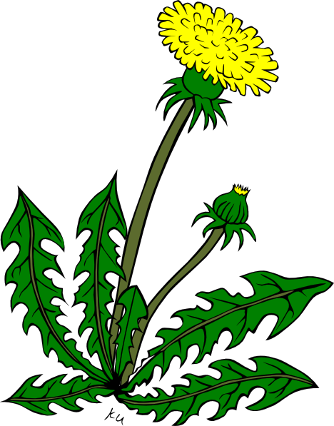Weeds clipart #6, Download drawings