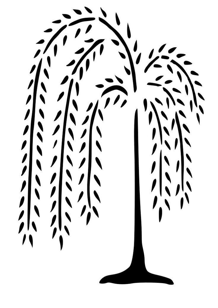 Weeping Willow clipart #5, Download drawings
