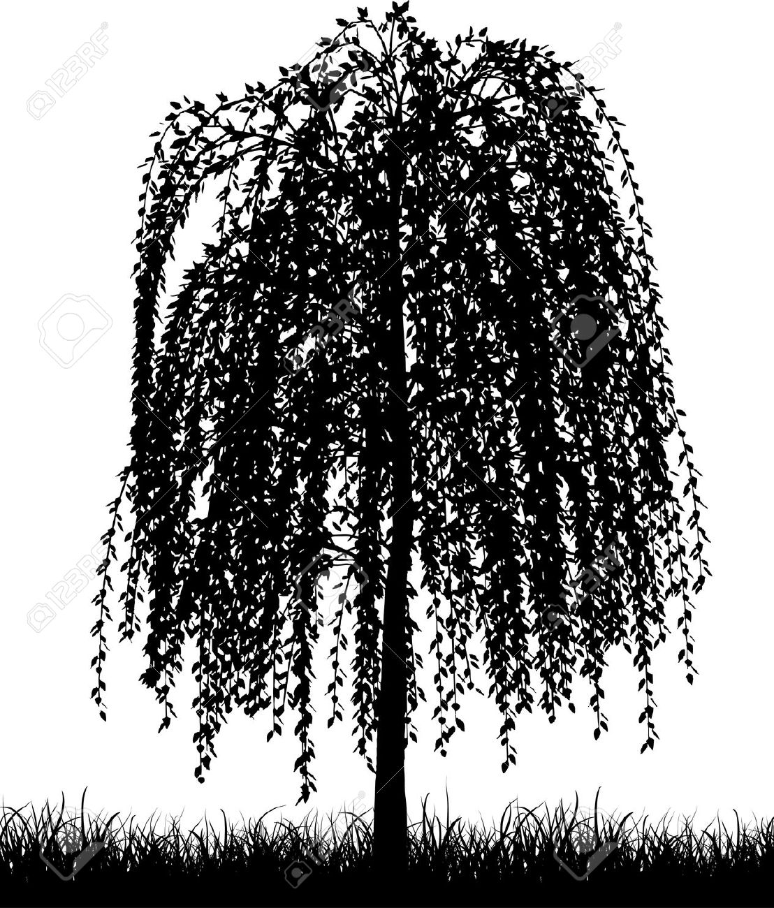 Weeping Willow clipart #16, Download drawings