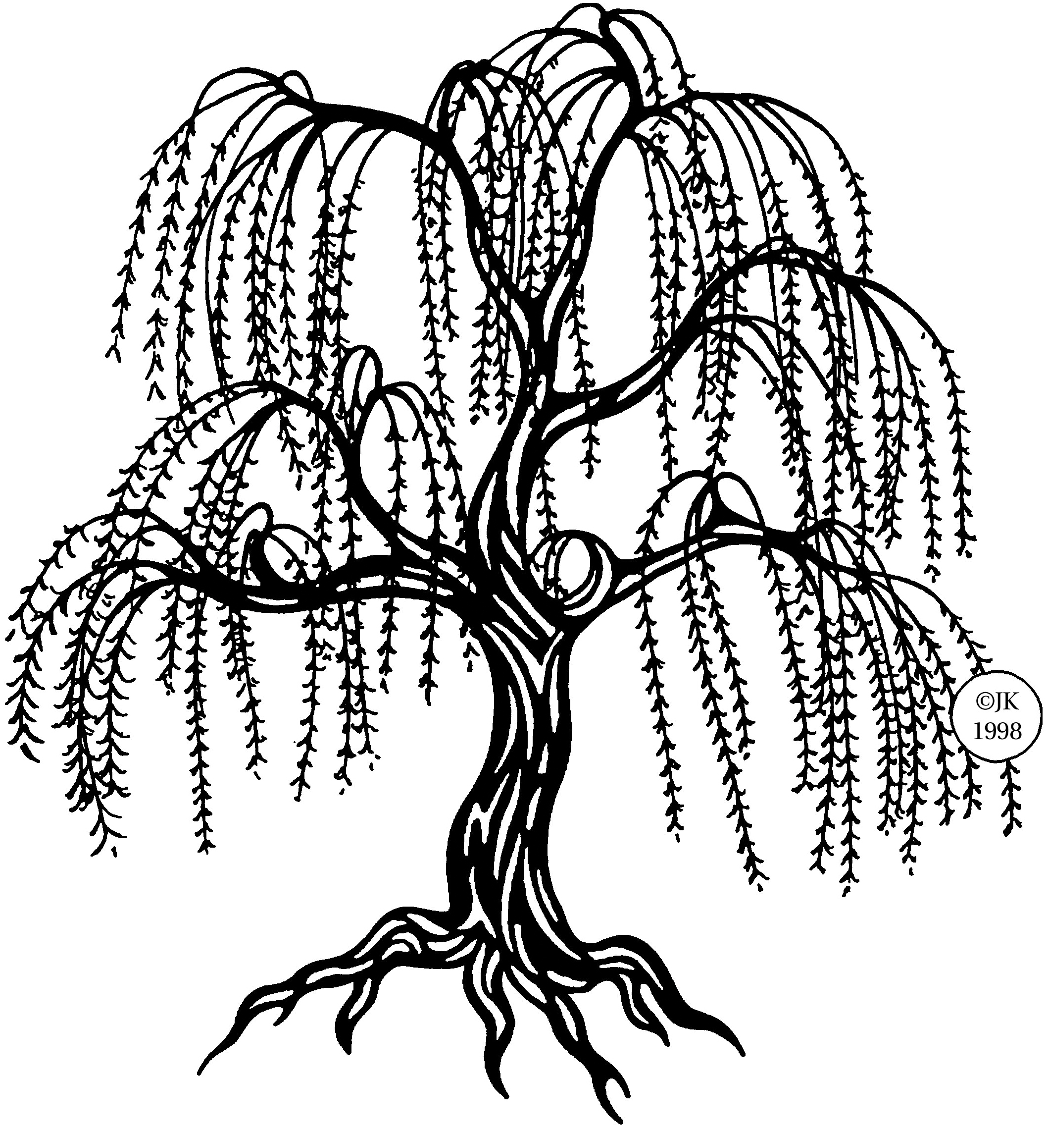 Weeping Willow coloring #11, Download drawings