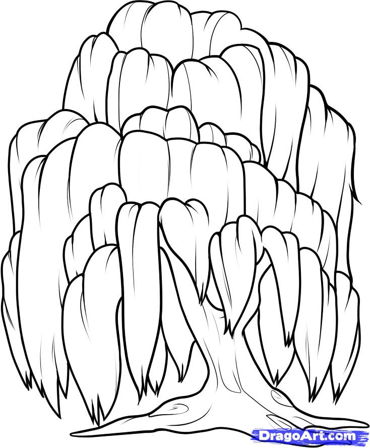 Weeping Willow coloring #19, Download drawings