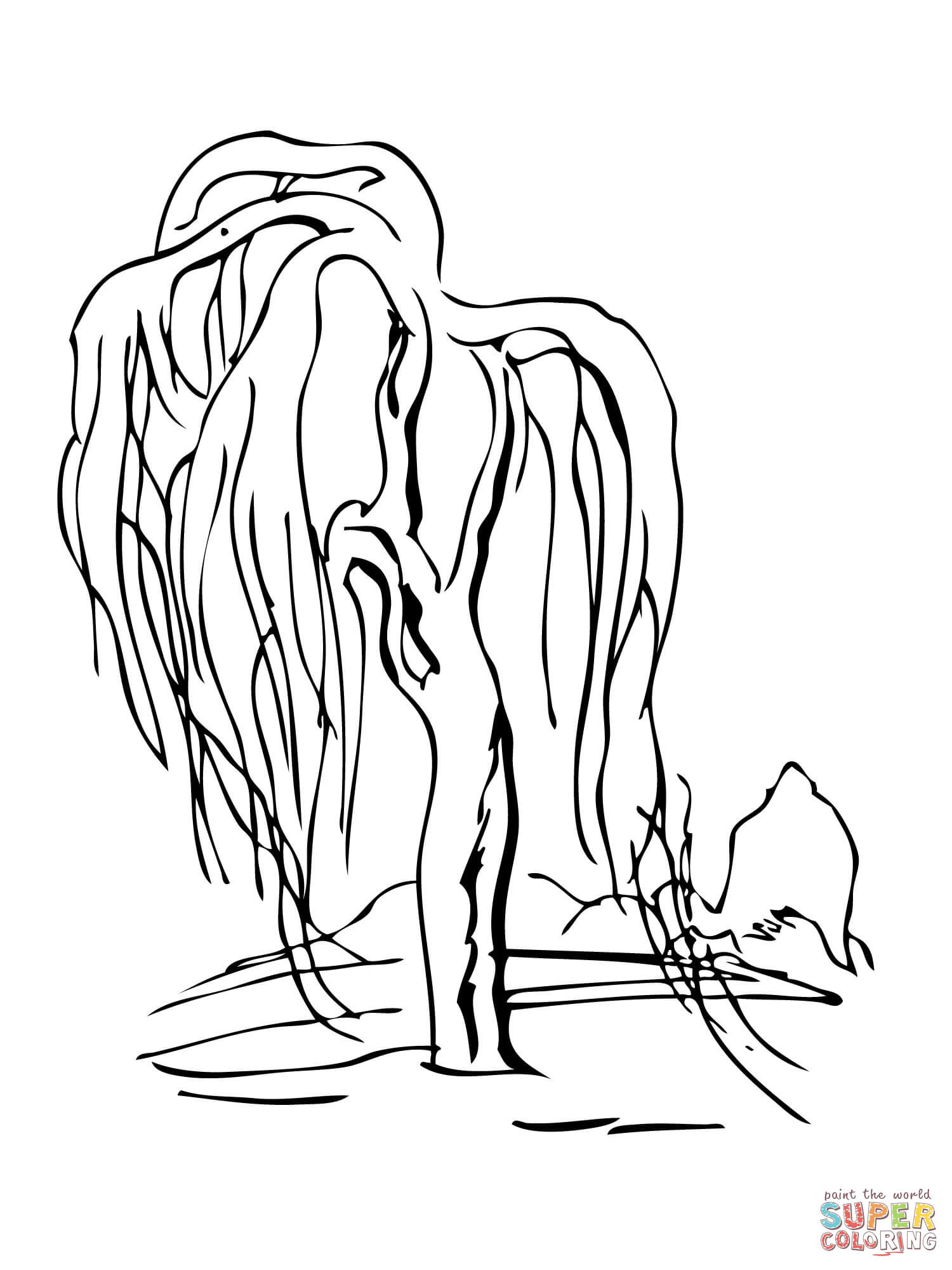 Weeping Willow coloring #10, Download drawings
